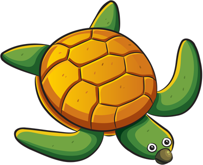 Learn easy to draw how easy to draw a turtle 13