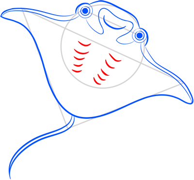 Learn easy to draw how easy to draw an electric ray 8