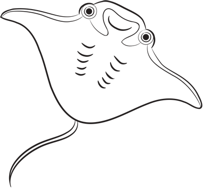 Learn easy to draw how easy to draw an electric ray 9
