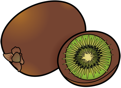 [Fruits and Berries Drawings] How to draw a Kiwi
