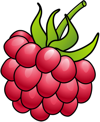[Fruits and Berries Drawings] How to draw a Raspberry