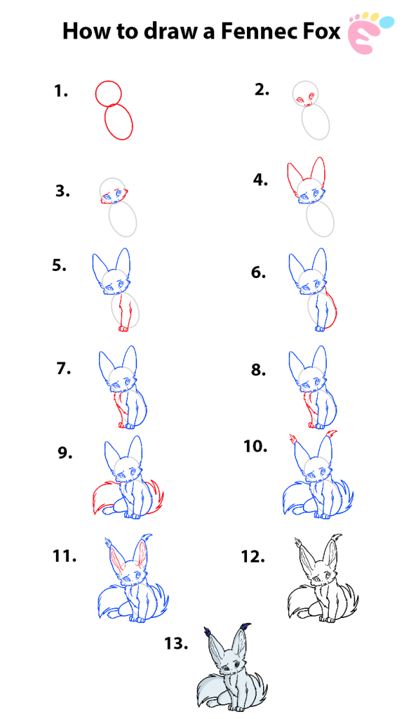 Learn easy to draw how to draw a nice fennec fox 576x1024