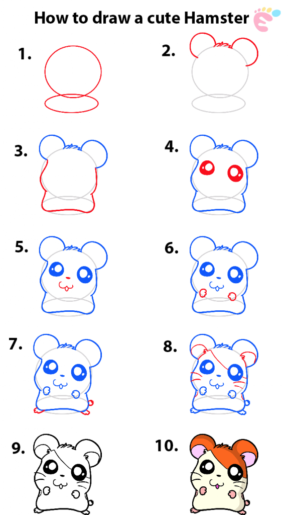 Learn easy to draw how to draw an adorable hamster 576x1024