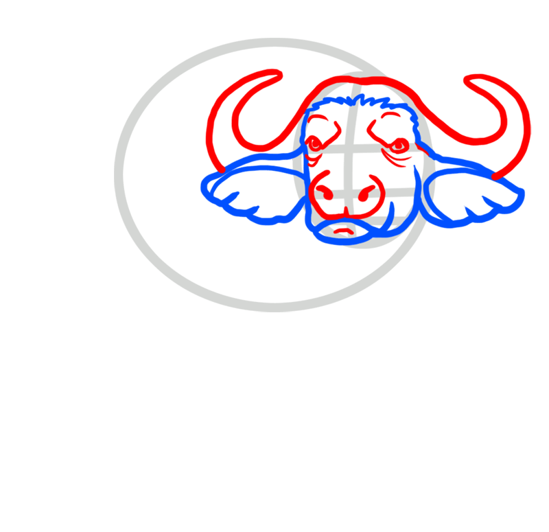 Learn easy to draw how to draw a buffalo drawing 3
