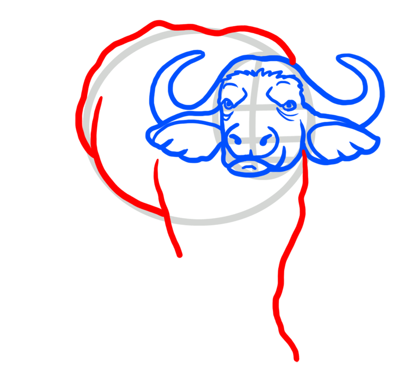 Learn easy to draw how to draw a buffalo drawing 4