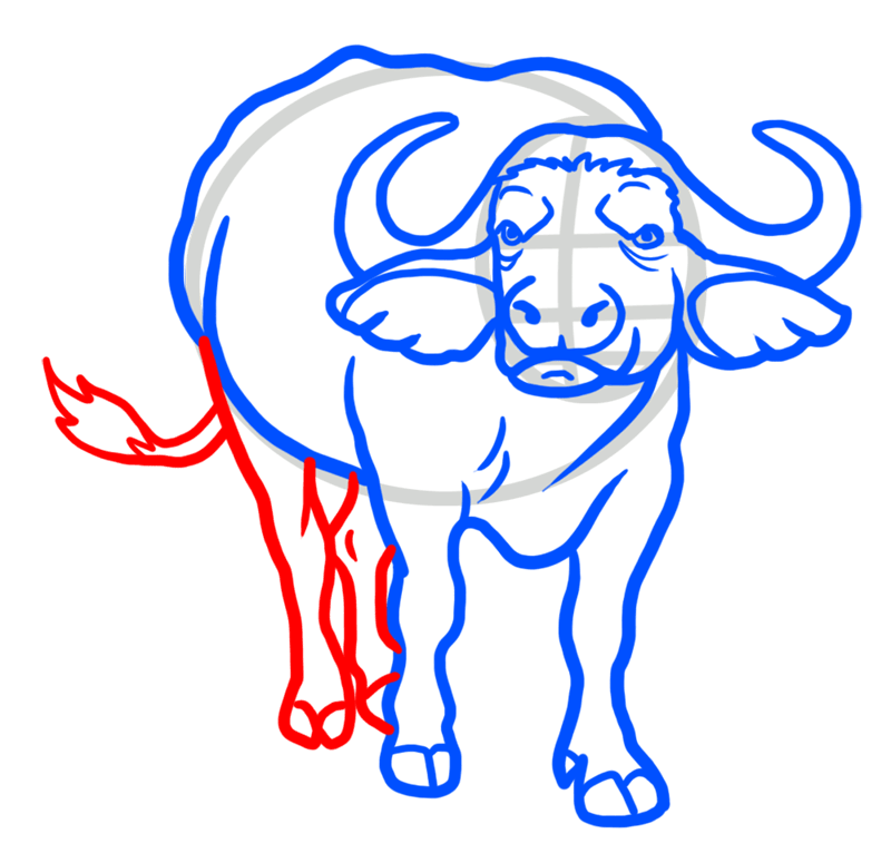 Learn easy to draw how to draw a buffalo drawing 6