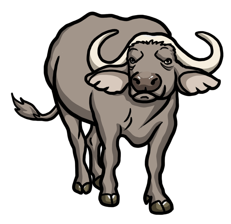 Learn easy to draw how to draw a buffalo drawing 8