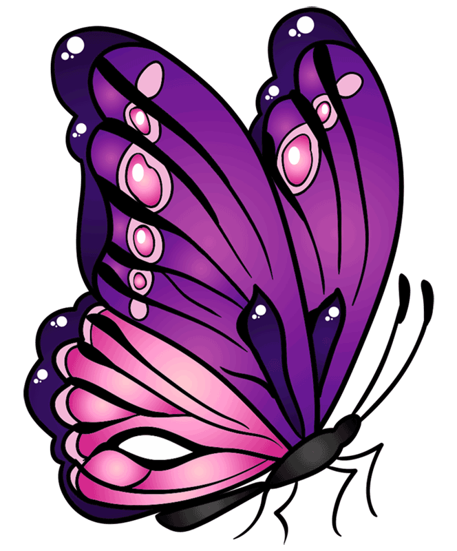 Learn easy to draw how to draw a butterfly line drawing 10