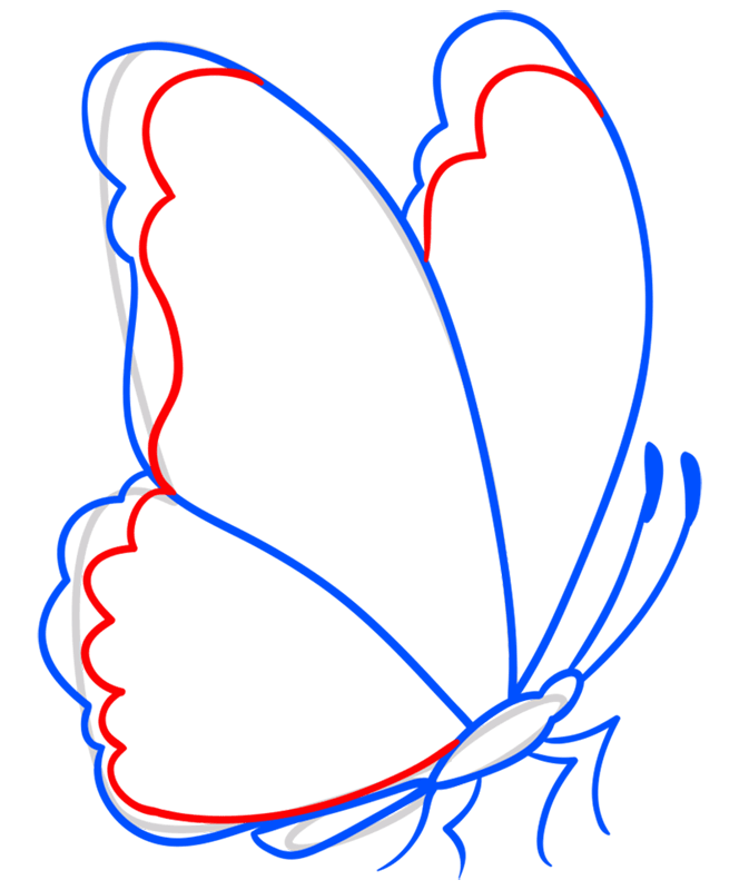 Learn easy to draw how to draw a butterfly line drawing 6