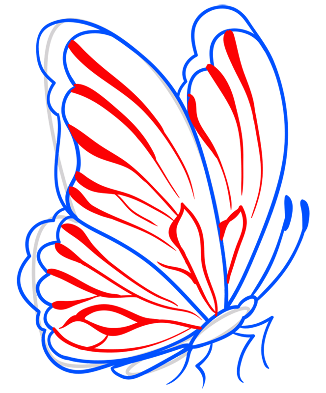 Learn easy to draw how to draw a butterfly line drawing 7