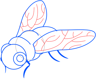 Learn easy to draw how to draw a fly drawing step 08