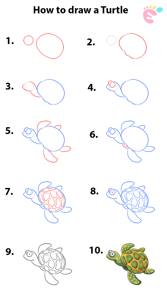 Learn easy to draw how to draw a turtle drawing 576x1024