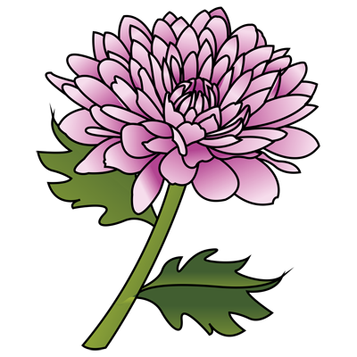 Learn how to draw a Peony drawing - Flower drawings